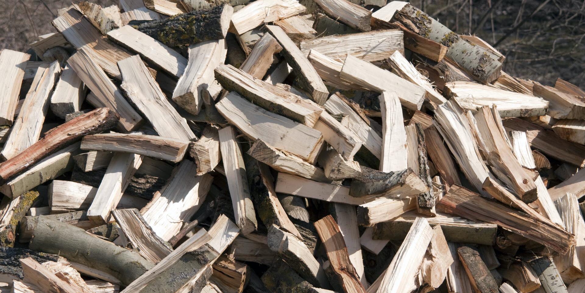 bois énergie biomasse