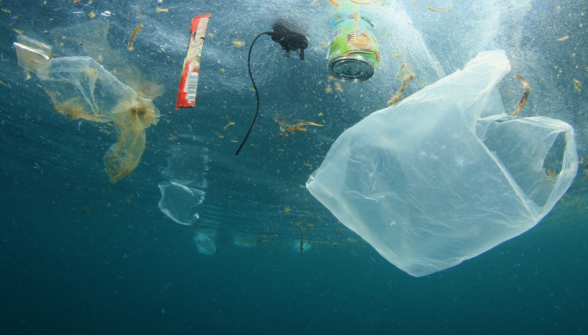 déchets marins océan mer pollution