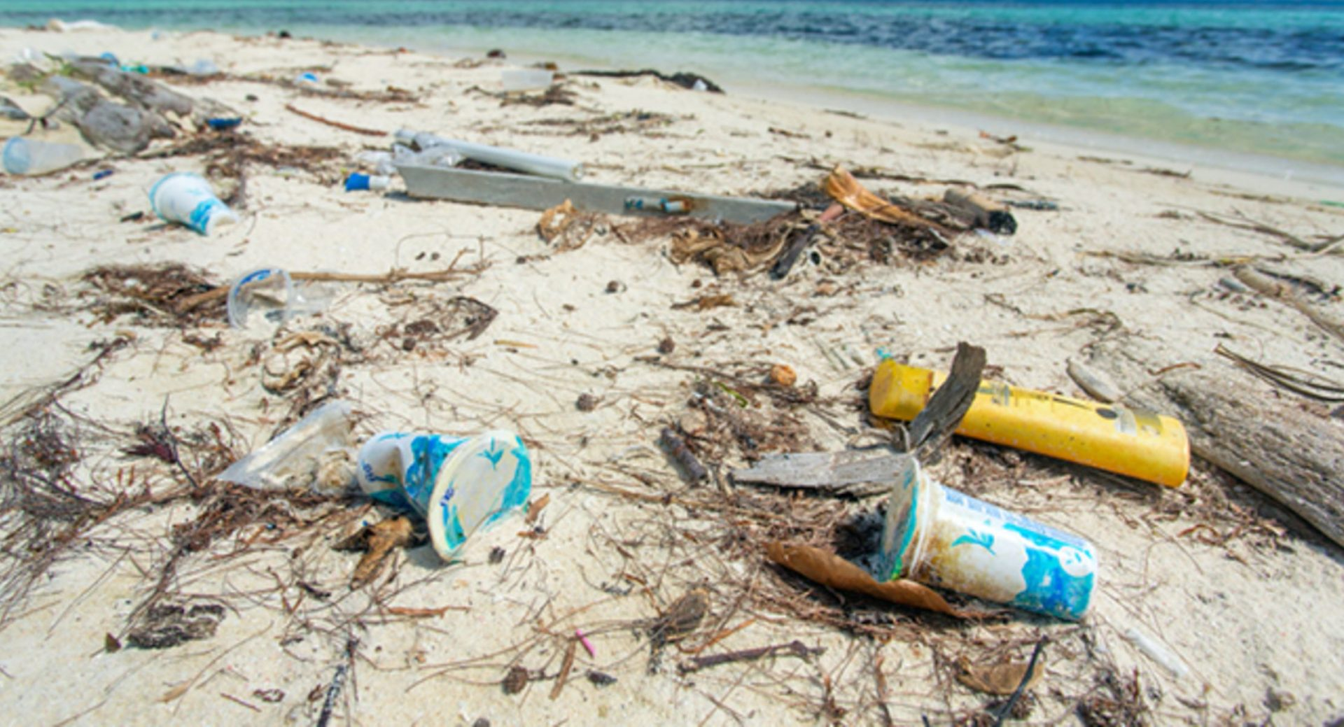 déchets plage pollution
