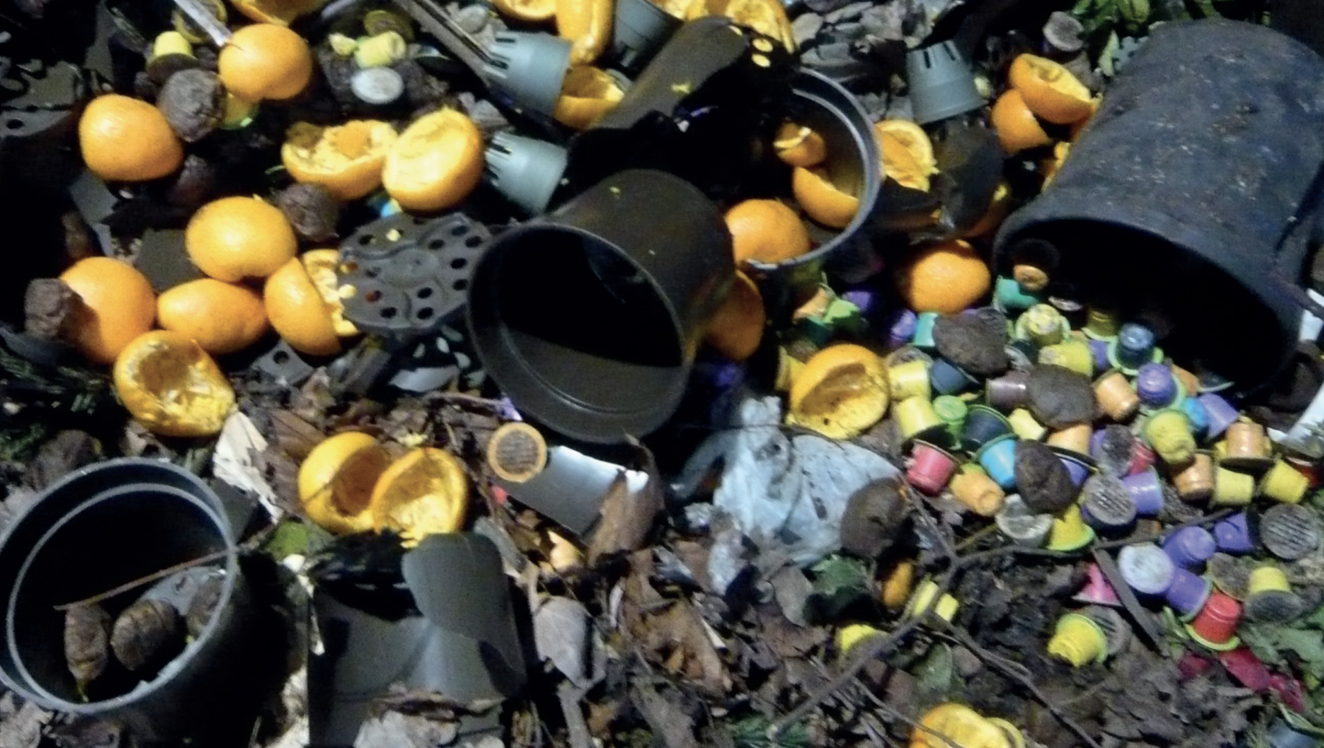 plastiques compostables