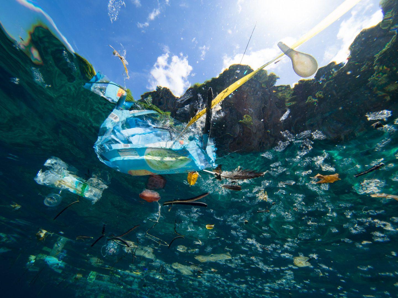 déchets aquatiques mer pollution