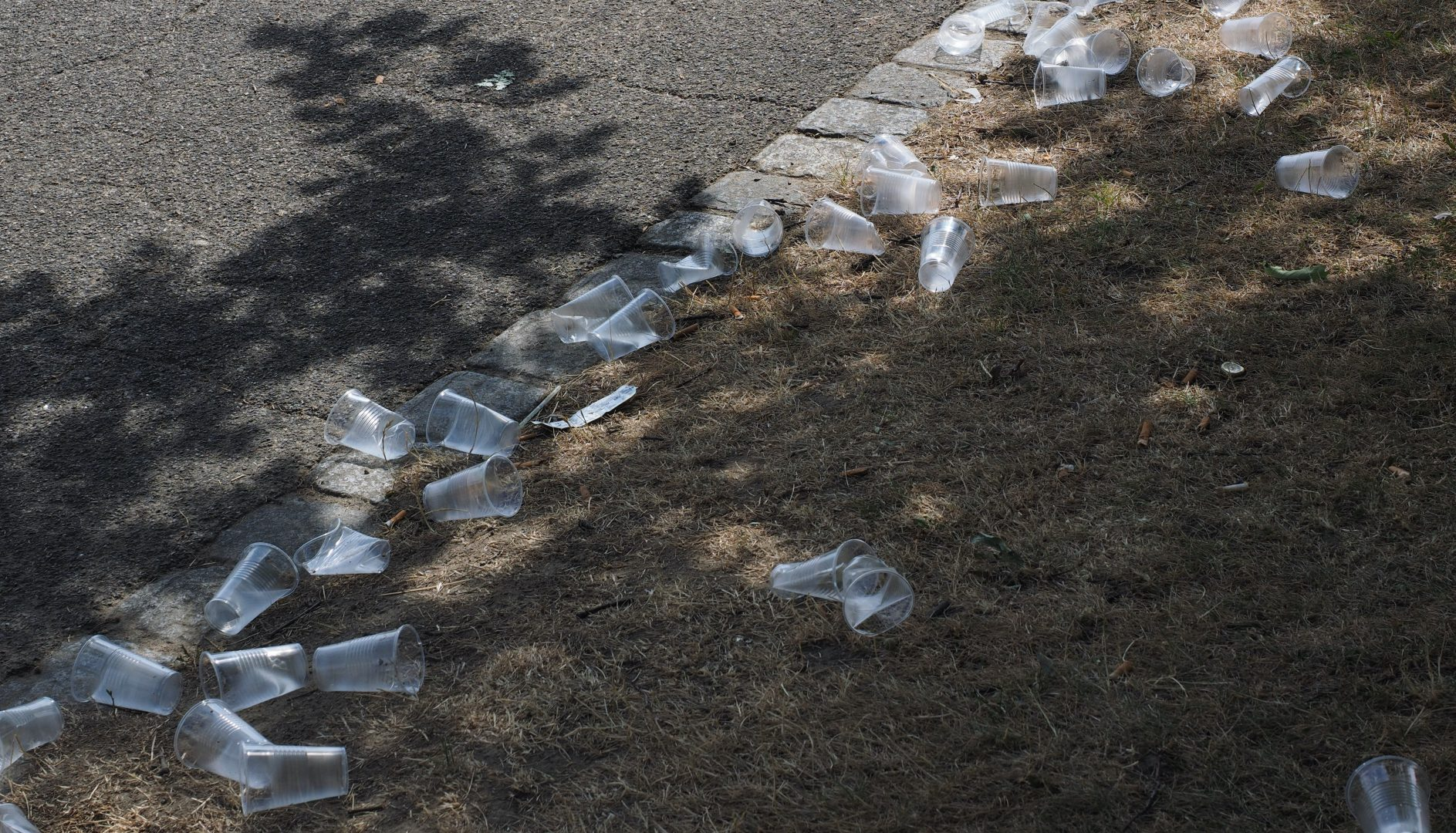 plastique gobelets jetables