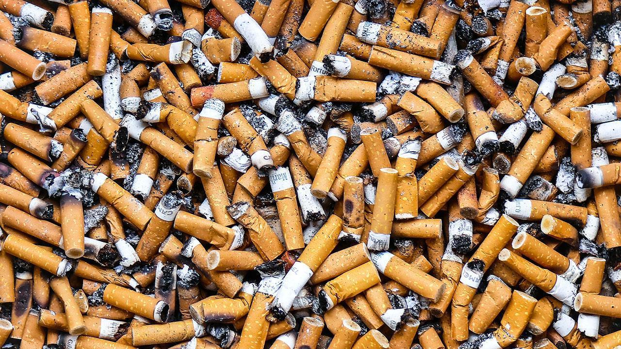mégots cigarettes